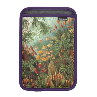 Haeckel Muscinae iPad Mini Sleeve