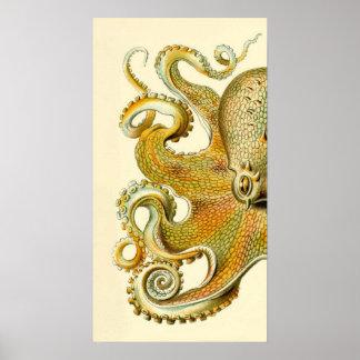 Haeckel Octopus Diptych II Poster