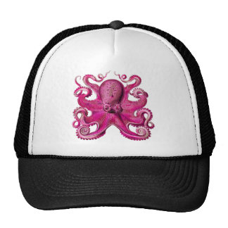 Haeckel Octopus Pink Cap