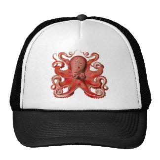 Haeckel Octopus Red Cap