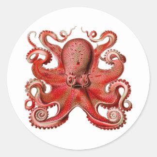 Haeckel Octopus Red Classic Round Sticker
