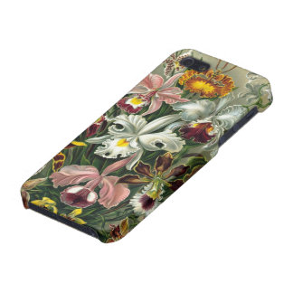 Haeckel Orchidaceae Orchids Cover For iPhone 5/5S