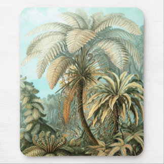 Haeckel Palm Trees Mouse Pad