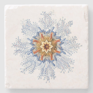 Haeckel Siphonophora Coaster