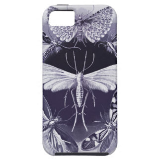 Haeckel Tineida iPhone 5 Cover