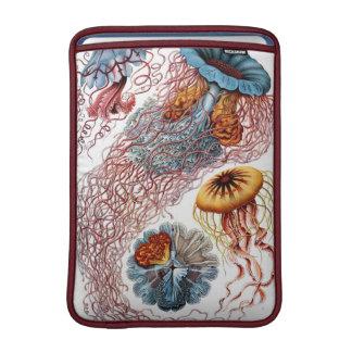 Haeckel Vintage Jellyfish MacBook Sleeve
