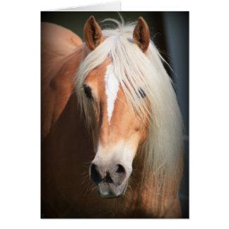 Haflinger Horse Card