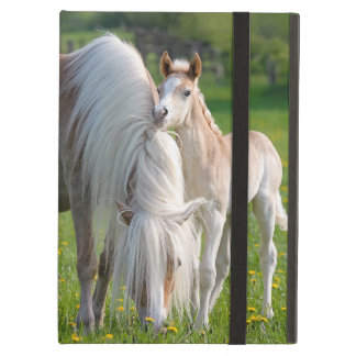 Haflinger Horses Cute Baby Foal With Mum Photo - Case For iPad Air