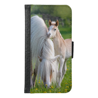 Haflinger Horses Cute Baby Foal With Mum Photo :; Samsung Galaxy S6 Wallet Case