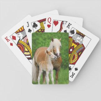 Haflinger Horses Cute Foal Kiss Mum Photo . Playing Cards