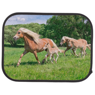 Haflinger Horses with Cute Foals Run Funny Photo . Car Mat