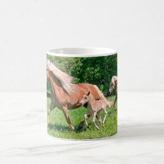 Haflinger Horses with Cute Foals Run Funny Photo . Coffee Mug