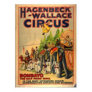 Hagenbeck Circus Vintage postcard Bombayo