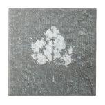 Haint Ceramic Tile