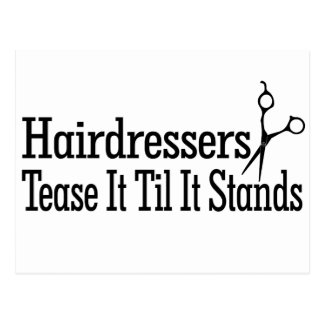 Hair Stylists Postcard