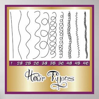 Hair Types1 Poster