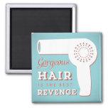 Hairdryer magnet
