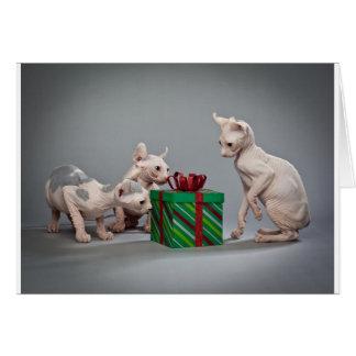 HAIRLESS CAT'S CHRISTMAS GREETING CARD