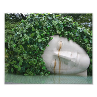 Hakone Photographic Print