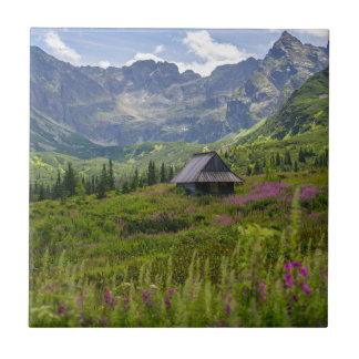 Hala Gasienicowa Mountain Huts Tile