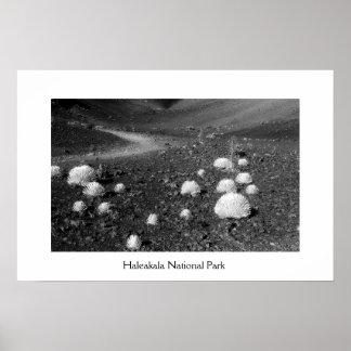 Haleakala National Park Poster