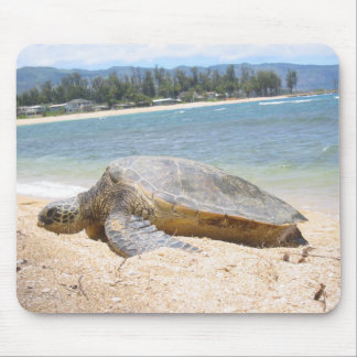 Haleiwa Honu on Last Day Mouse Pad