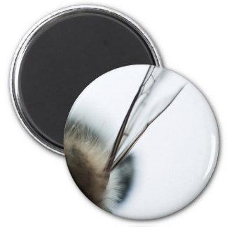 Half 6 Cm Round Magnet