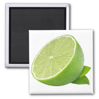 Half of lime square magnet