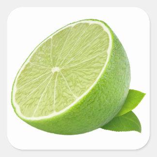 Half of lime square sticker