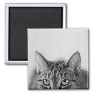 Half of the cat portrait. magnet