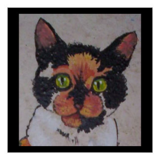 Hall cat posters