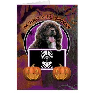 Hallowee, - Just a Lil Spooky - Cocker Spaniel Card
