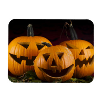 Halloween Background With Pumpkins In The Grass Rectangular Photo Magnet