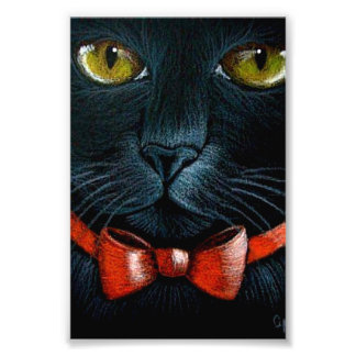 "HALLOWEEN BLACK BAT WITH ORANGE RED BOW 4"" X 6"" PHOTO PRINT"