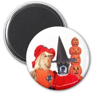 Halloween boxer magnet