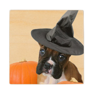 Halloween boxer puppy wood coaster