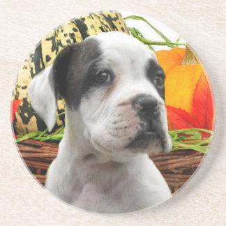 Halloween boxer puppyCoaster Drink Coasters