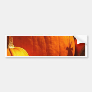 Halloween Cards Bumper Sticker