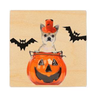 Halloween Chihuahua dog Wood Coaster