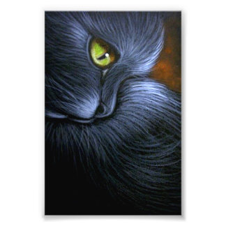 "HALLOWEEN FANTASY BLACK CAT 4"" X 6"" PRINT"