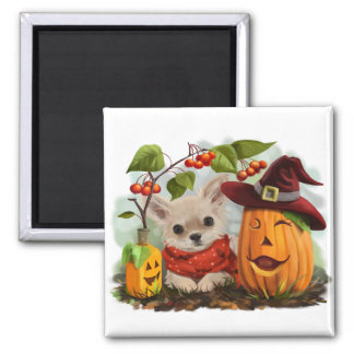 Halloween for Chihuahuas Magnet
