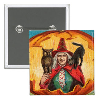 Halloween Good Wishes Witch Pinback Button
