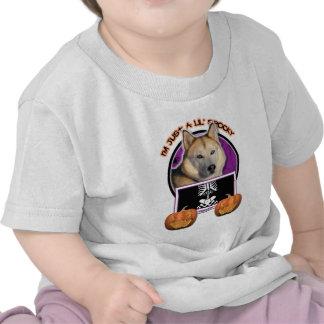 Halloween -Just a Lil Spooky Siberian Husky Copper T Shirts