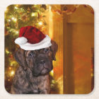 Halloween Mastiff puppy Square Paper Coaster