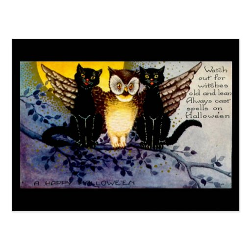 Halloween Owl and Black Cats Post Card