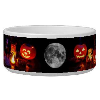 Halloween Pet Bowl
