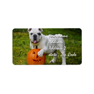 Halloween pumpkin bulldog address label