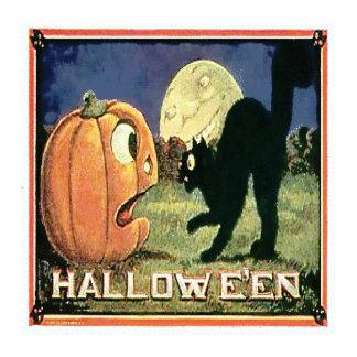 Halloween Pumpkin & Cat Photo Sculpture