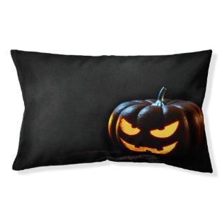 Halloween Pumpkin Jack-O-Lantern Spooky