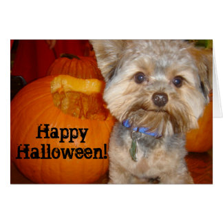 Halloween Pup Greeting Card
